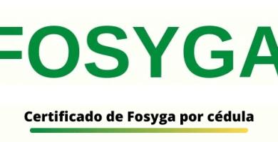 certificado del fosyga por cedula