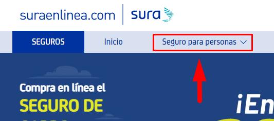 C:\Users\Francisco\Pictures\Cómo comprar el soat sura en línea paso 2.png